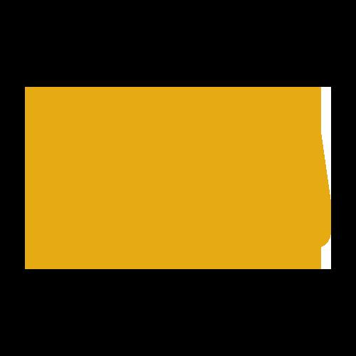 bus_y